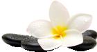 Nana Bali Massage